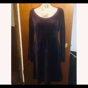 NWOT Juicy Couture Velour Long Sleeve Dress